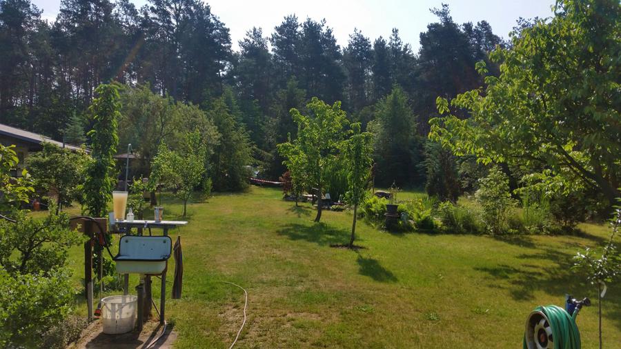 2-bogensportblog-de-Turnierbericht-Dritte-Bralitzer-Bogenjagd-Gartenparcours-Garten1