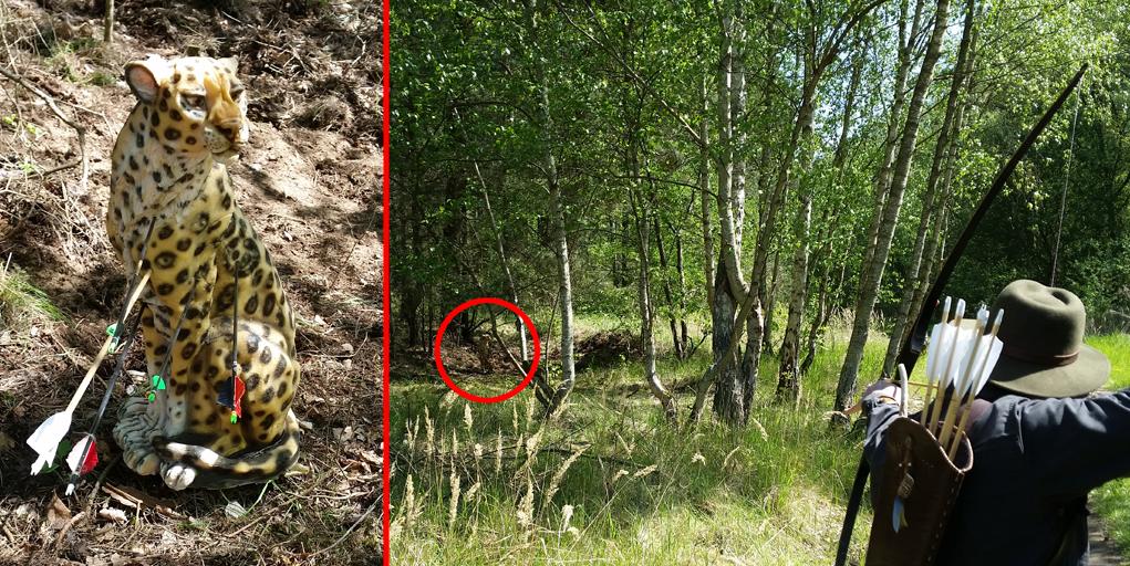 bogensportblog-de-bowhunter-jamboree-2016-strelitzer-feldbogensportgilde-Leopardenschuss